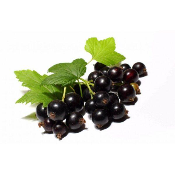 """Пюре Черная смородина замороженное """"Fruits Rouges & Co"""" Франция, 1 кг."""