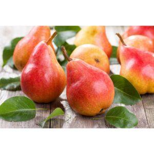 "Пюре Груша замороженное ""Fruits Rouges & Co"" Франция, 1 кг."